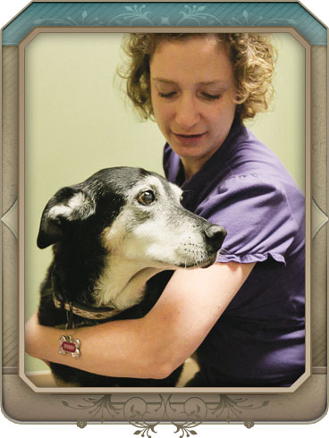 Health Maintenance Services of North Paws Veterinary Clinic